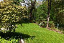 Zimní údržba zahrady / Potřebujete vyčistit bazén, posekat zahradu? Prostě udělat práci na kterou nemáte čas a nestíháte?  Právě teď je nejvyšší čas na zazimování vaší zahrady i bazénu.