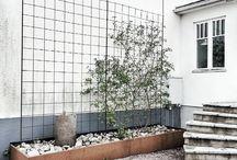 Trädgård / Plantering