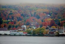 Fall  foliage trips