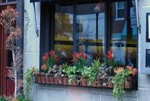Strega Restaurant Locations / Get a taste of some of our other Strega restaurant locations!