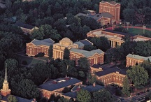 Davidson College | Davidson, NC / by Davidson Village Inn