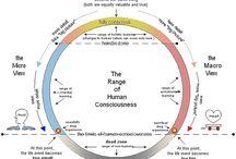 scala constiintei umane