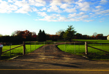 Agricultural Fence / Roma Fence has its own line of Agricultural or Farm Fence products.
