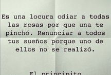 frases/notas
