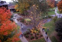 """""""Off Season"""" Fun - Fall, Winter, Spring in Saratoga"""