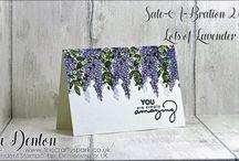 SU - Lots of lavender