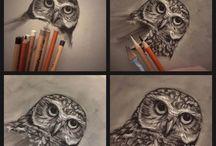 My Sketches & Studies