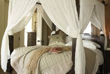 Master Bedrooms / by Stephanie Thompson