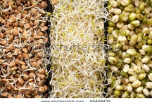 superfoods ~ up your health game / by Sedona Bride Photogs Andrew