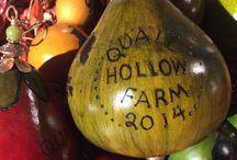 Quail Hollow Farm - Nevada / Quail Hollow Farm in Overton, NV  Farmers Laura and Monte Bledsoe - http://www.quailhollowfarmcsa.com