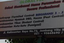 Anti Rayap Jakarta