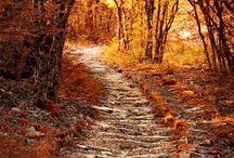 Mesebeli ősz