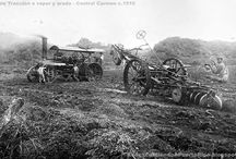 Latin America, Carribean & Hawaii Road steam esp ploughing / Some of the best shots I know of that give a feeling for steam cultivation of sugar cane. Most engines are John Fowler & Co (Leeds) Ltd