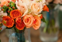 Tangerine-Peaches / orange you glad I pinned this! / by Royal Rococo