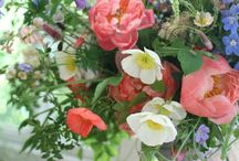Flower Arrangements / by Susanna Brellis