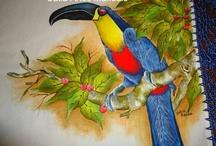 Pintura e fotos de Aves do Brasil / Pintura em tecido e fotos....Aves Brasileiras