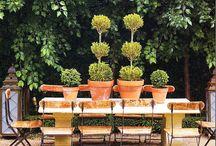 I love topiary!!