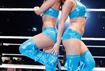 The Bella twins / Fearless Nikki and brie mode