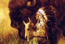 amerindian spirit