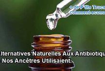 Santé_antibiotics naturels