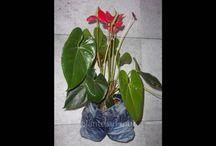 jeans@co by sissi arts body / recyclage de jeans et textile en objet décoratif