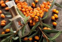 Danke, Natur / 1978 gründeten ein paar Idealisten eine Marke für Naturkosmetik. 35 Jahre später ist LOGONA eine Marke die Tradition und Innovation vereint. Dank des Pioniergeists ihrer Gründer. Dank der sanften Kraft der Pflanzen, die Haut und Haaren alles liefern, was sie brauchen. Dank hochwertigster Pflanzen-Extrakte aus eigener Herstellung. Dank der Qualität Made in Germany. Danke, Natur. Wir freuen uns auf die nächsten 35 Jahre mit dir.