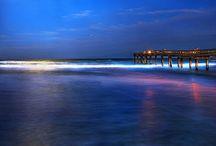 Saint Augustine, FL / by Janie Coffey