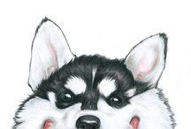 dogs / wolf / fox