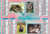 CAT CALENDAR / Le chat sur les calendriers
