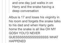 Harry Potter next generation