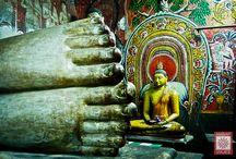 Viaje a Sri Lanka / Fotos de los viajeros AMBARVIAJES a Sri Lanka. ¿Quieres conocer este país?