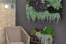 Vertical Beast / Vertical garden and small space garden and courtyard ideas