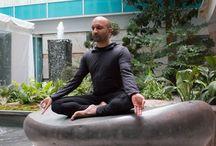 The Meditation Network