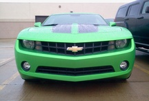 Dream on...Dream until the dream comes true / For someone who is not materialistic, I have two hang ups...the new Cameros and Trans Ams. I WILL have one of them! / by Laura Padgett
