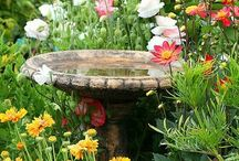 garden features / by Susi Hupi