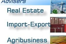 BRAZILIAN BUSINESS ADVISER / BUSINESS ADVISER