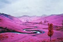 Richard Mosse / Conceptual Documentary Photographer Richard Mosse is best known for his use of colour infrared film to depict the tragedy of war.