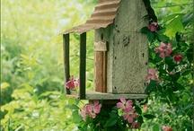 Bird & Critter homes