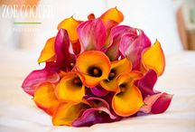 Wedding Flowers / Beautiful flowers ideas from weddings I have photographed