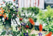 Cleveland Backyard Wedding / Cleveland Backyard Wedding of T + M Featured on Style Me Pretty  Florals // Molly Taylor and Co. Styling and Rentals // Borrow Rentals Photography // Aster and Olive Tent // Aable Rents