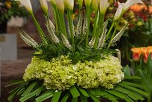 Floral / Flowers, plants, centerpieces