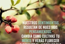Frases! / by Marisela Vargas