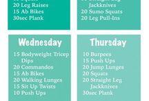 Program fitness