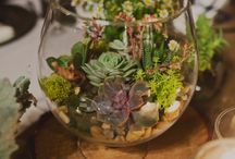 Glass Bowl Arrangements