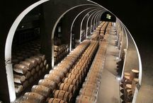 Salas de barricas españolas / wine cellars,Spain