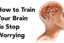 Hjerne Endre
