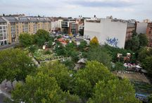 Program 1 - Urban gardening