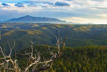 Colorado Backcountry Camping / A wish list of places we want to go. Have we missed any? Let us know at info@bushsmarts.com