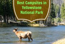 Visiting the National Parks / The National Parks System of the United States has many gorgeous places to travel with your family or for an adventurous getaway. Here are some pins to help you plan your trip!