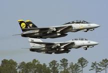 F- 14 Tomcat (Grumman)